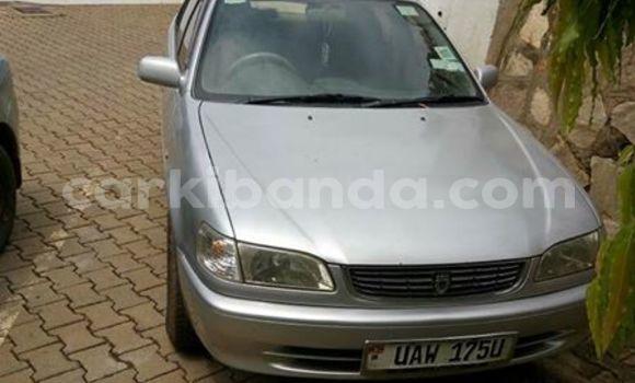 Acheter Occasion Voiture Toyota Corolla Gris à Kampala, Ouganda