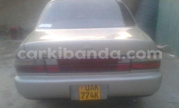Buy Used Toyota Corolla Silver Car in Kibuye in Uganda