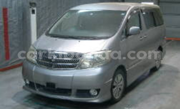 Buy New Toyota Alphard Silver Car in Kampala in Uganda