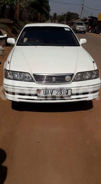 Big with watermark 30623955 578122035882356 6857030771144654848 n