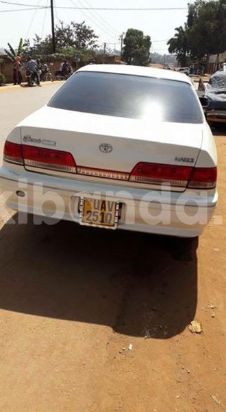 Big with watermark 30629329 194112211393369 244064733525704704 n