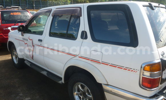Buy Used Nissan Terrano White Car in Arua in Uganda