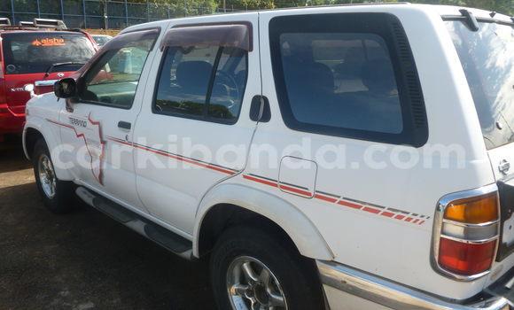 Buy Used Nissan Terrano White Car in Arua in Uganda