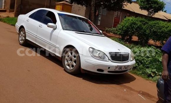 Buy Used Mercedes Benz S–Class White Car in Kampala in Uganda