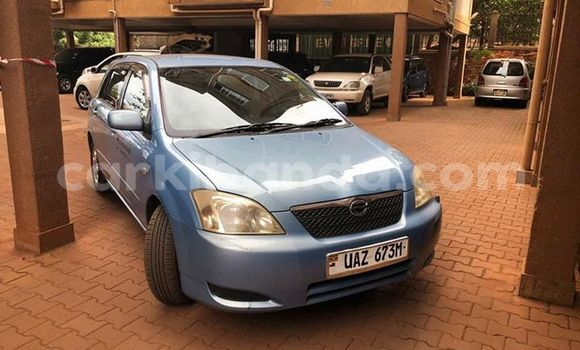 Buy Used Toyota Allex Other Car in Kampala in Uganda