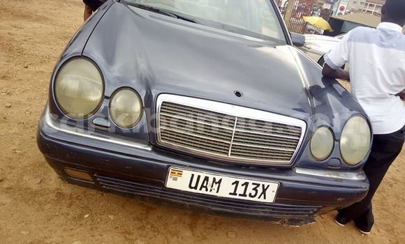 Buy Used Mercedes‒Benz 230 Other Car in Kampala in Uganda