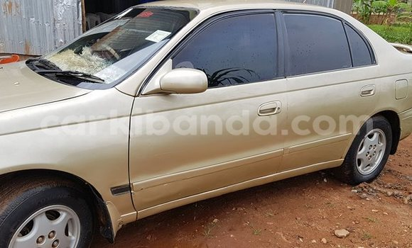 Buy Used Toyota Corolla Other Car in Entebbe in Uganda