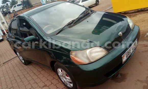 Buy Used Toyota Platz Green Car in Kampala in Uganda