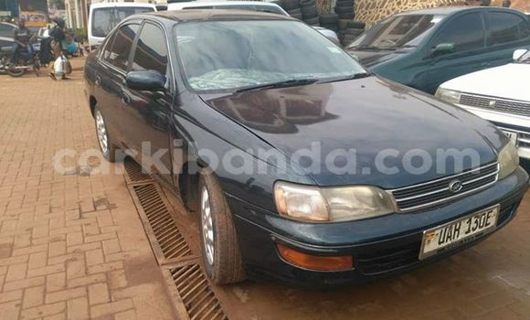 Buy Used Toyota Carina Other Car in Kampala in Uganda