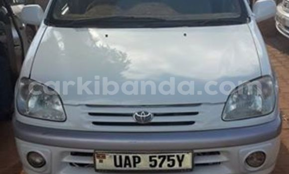 Buy Used Toyota Raum White Car in Arua in Uganda