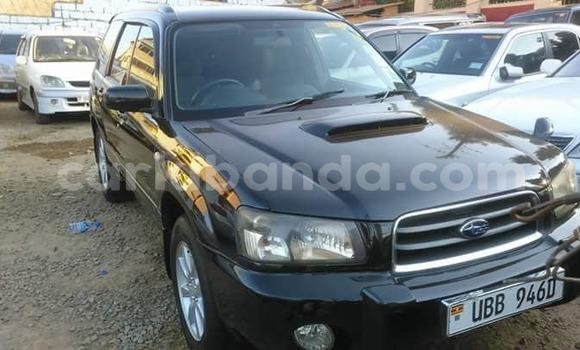 Buy Used Subaru Forester Black Car in Kampala in Uganda