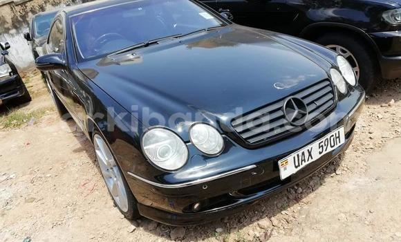 Buy Used Mercedes Benz CLK–Class Black Car in Kampala in Uganda