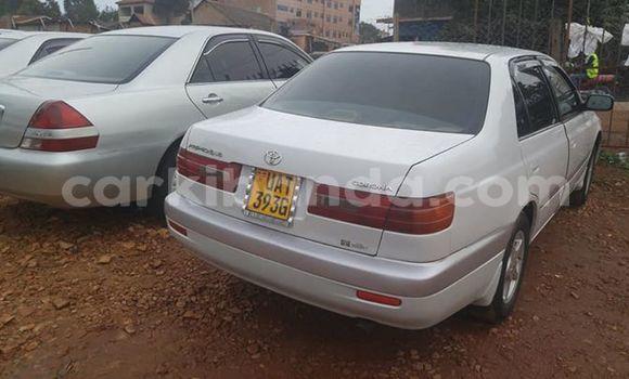 Buy Used Toyota Premio White Car in Kampala in Uganda
