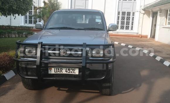 Buy Used Toyota Pickup Other Car in Kampala in Uganda