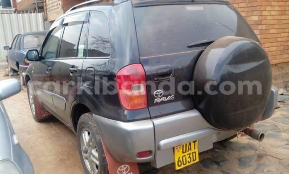 Buy Used Toyota RAV4 Black Car in Arua in Uganda