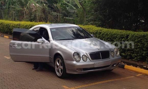 Buy Used Mercedes‒Benz CLK–Class Silver Car in Kampala in Uganda