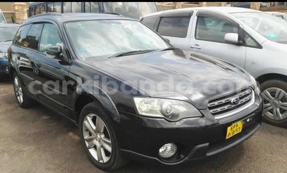 Buy New Subaru Outback Blue Car in Kampala in Uganda
