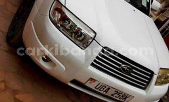 Buy Used Subaru Forester White Car in Kampala in Uganda