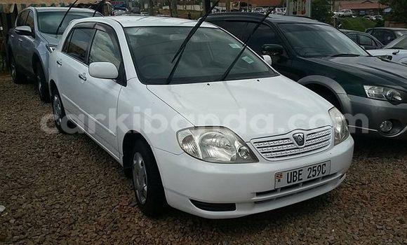Buy Used Toyota Allex White Car in Kampala in Uganda
