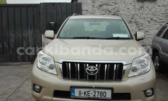 Buy Used Toyota Land Cruiser Other Car in Kampala in Uganda