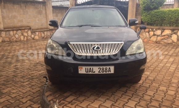 Buy Used Lexus RX 330 White Car in Kampala in Uganda