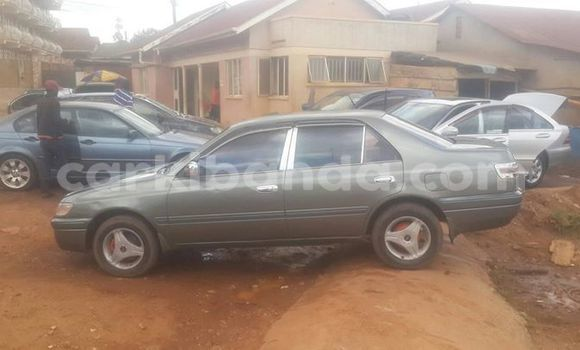Buy Used Toyota Premio Brown Car in Kampala in Uganda