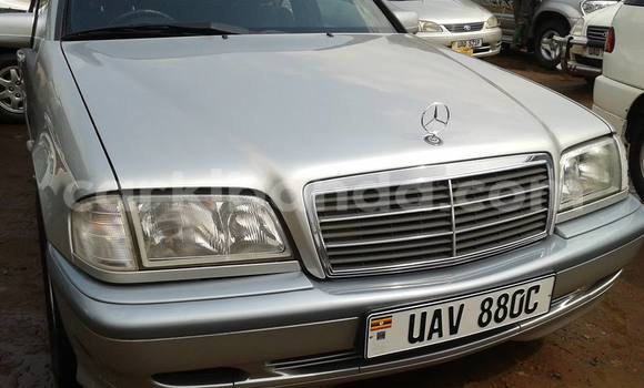 Buy Used Mercedes Benz C-Class Silver Car in Arua in Uganda