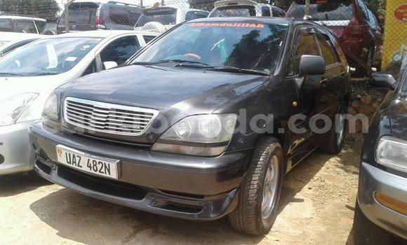 Buy Used Toyota Harrier Black Car in Kampala in Uganda
