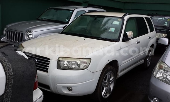 Buy Used Subaru Forester White Car in Kampala in Uganda