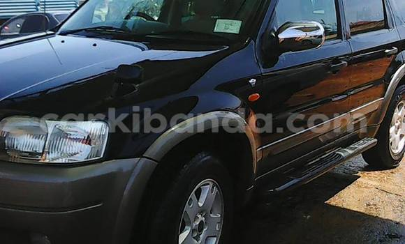 Buy Used Ford Escape Black Car in Arua in Uganda