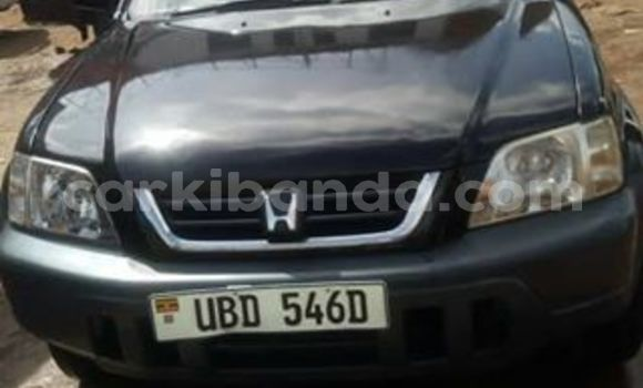 Buy Used Honda CR–V Black Car in Kibuye in Uganda