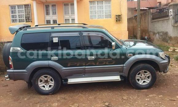 Buy Used Toyota Prado Car in Arua in Uganda