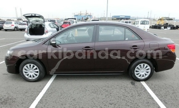 Buy Import Toyota Premio Beige Car in Kampala in Uganda