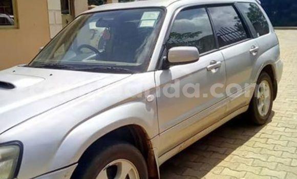 Buy Imported Subaru Forester Silver Car in Kampala in Uganda