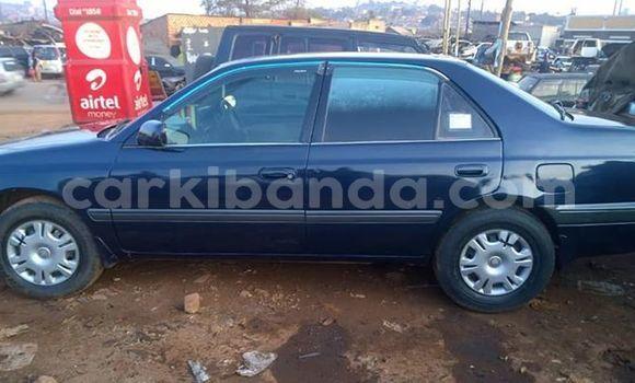Buy Imported Toyota Premio Blue Car in Kampala in Uganda