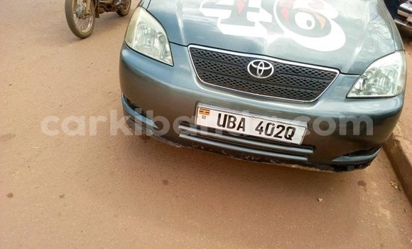 Buy Imported Toyota Runx Other Car in Kampala in Uganda