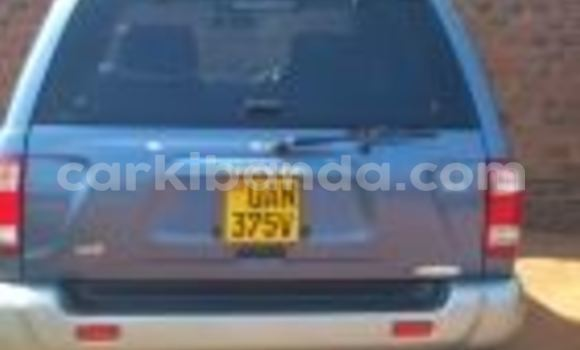 Buy Used Nissan Terrano Blue Car in Arua in Uganda