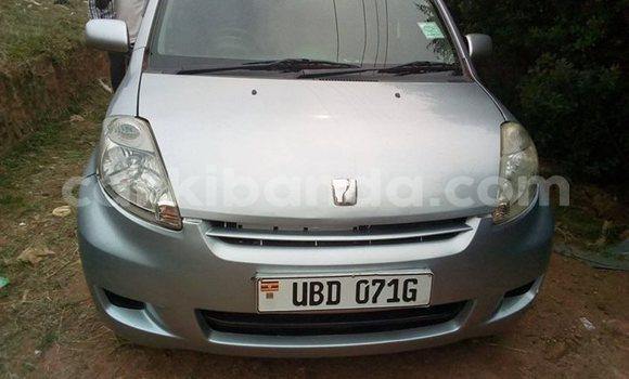 Buy Used Toyota Passo Silver Car in Kampala in Uganda