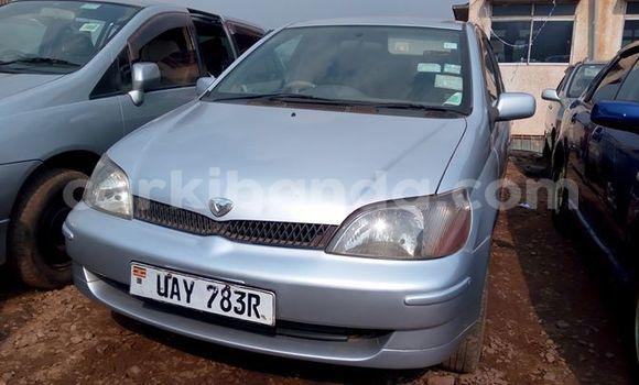 Buy Used Toyota Platz Silver Car in Kampala in Uganda