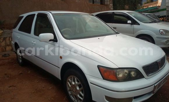 Buy Used Toyota Aristo White Car in Kampala in Uganda