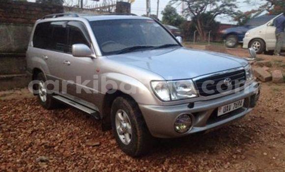 Buy Used Toyota Land Cruiser White Car in Arua in Uganda
