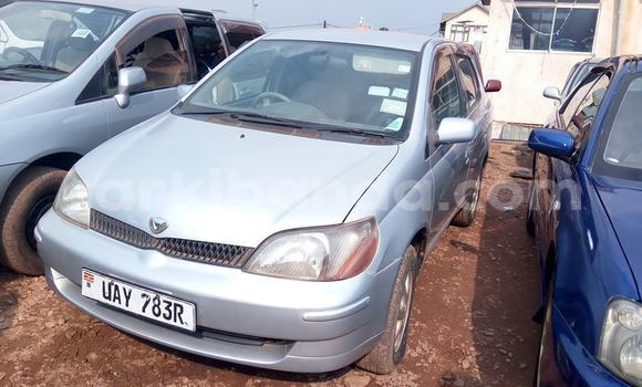 Buy Used Toyota Platz Silver Car in Kampala in Uganda