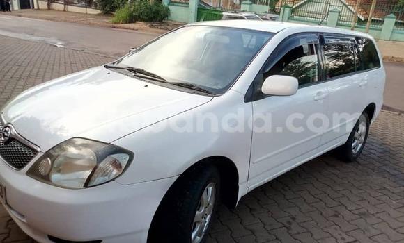 Buy Used Toyota Fielder White Car in Kampala in Uganda