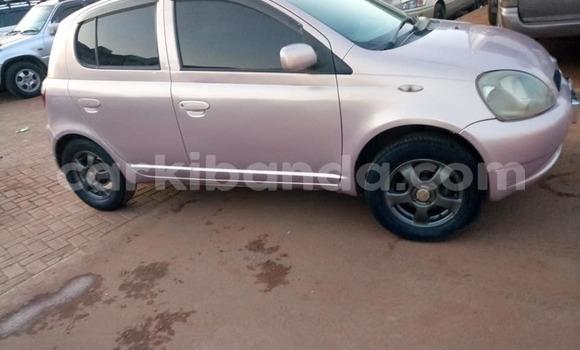Buy Used Toyota Vitz Other Car in Kampala in Uganda