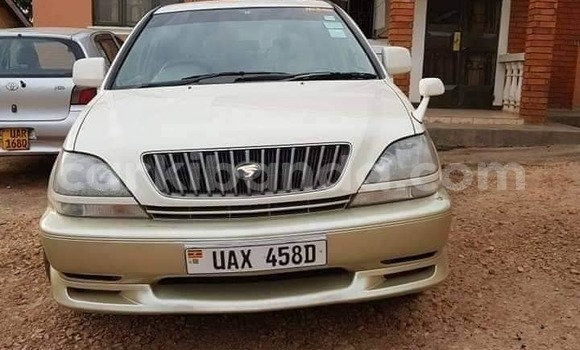 Buy Used Toyota Harrier Other Car in Kampala in Uganda