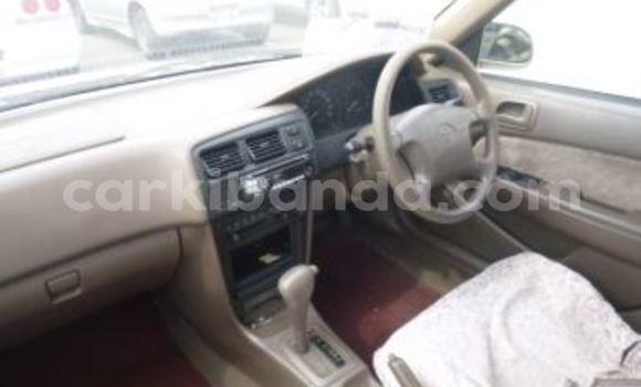 Acheter Occasion Voiture Toyota Corolla à Arua, Ouganda