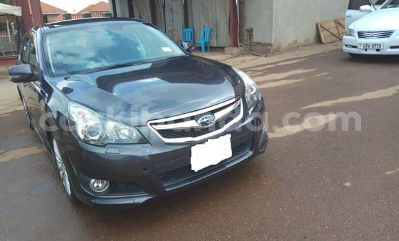Buy Used Subaru Legacy Other Car in Kampala in Uganda