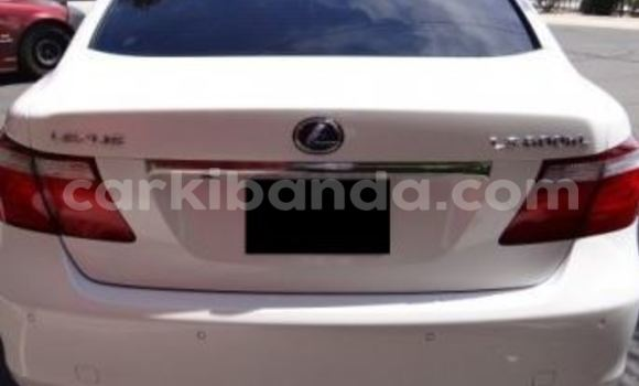 Buy Used Lexus ES 300 White Car in Arua in Uganda