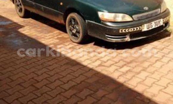 Buy Used Toyota Windom Green Car in Kampala in Uganda