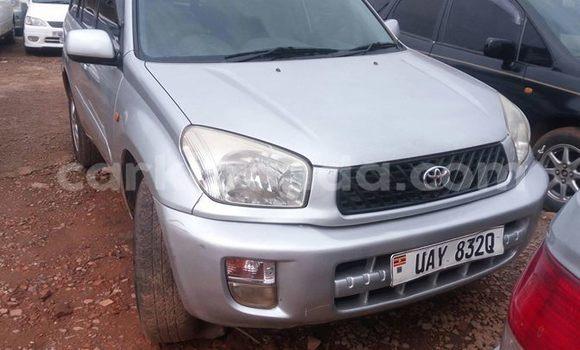 Buy Used Toyota RAV 4 Silver Car in Kampala in Uganda